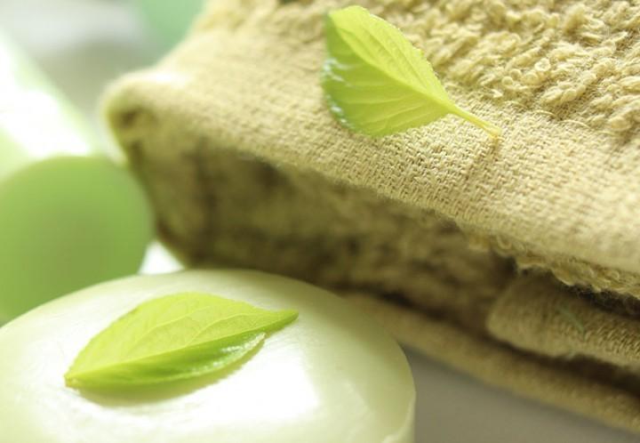 Ingredient Spotlight: Green Tea
